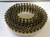Schnellbauschrauben für Magazinschrauber Holzher