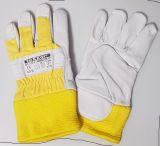 Rind-Vollleder-Fingerhandschuh teXXor  Himalaya-II 6 Paar Größe 8